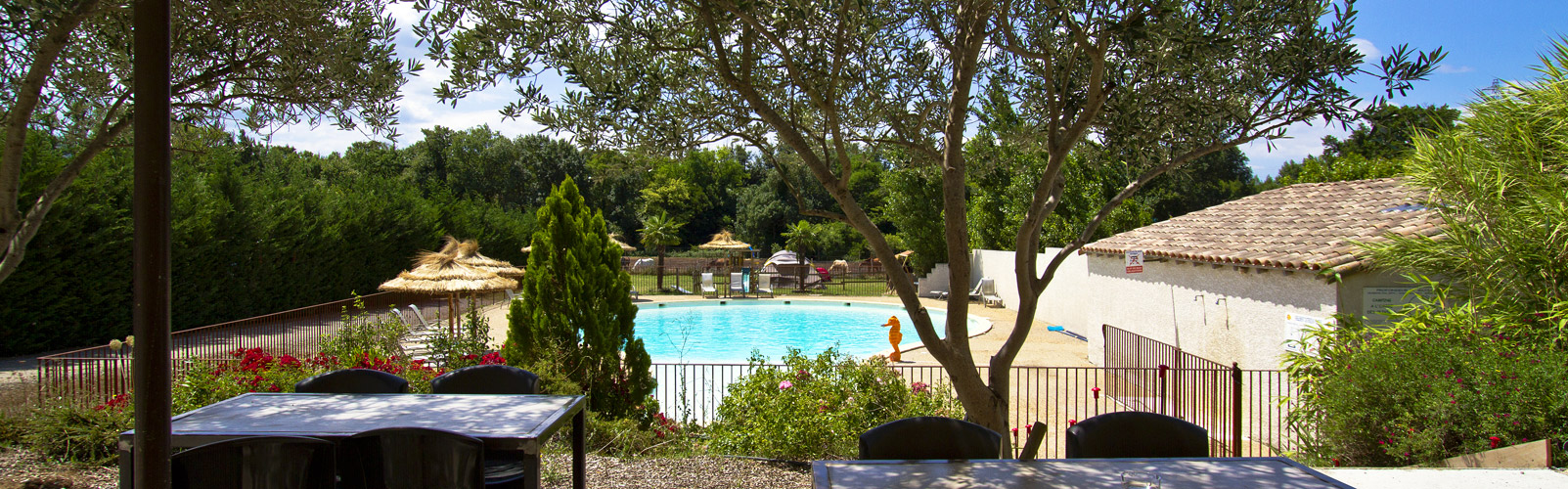 camping-carcassonne-piscine