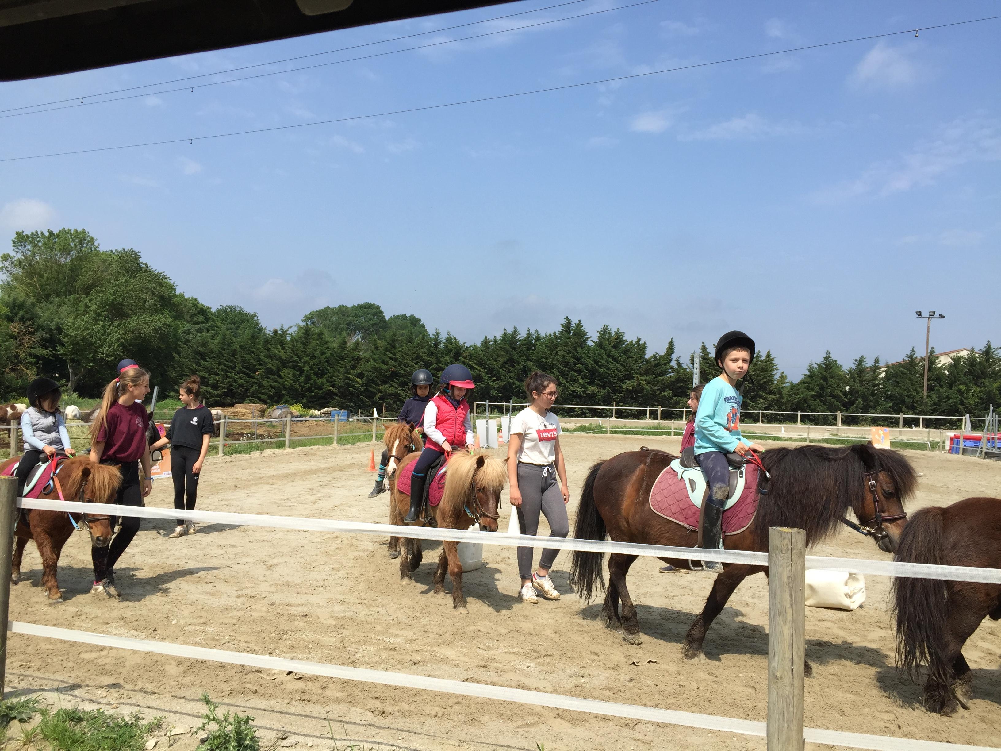 Apprentissage en carrière avec les poneys