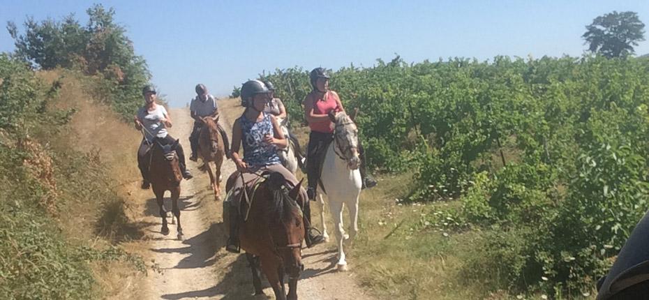 randonnee-equestre-proche-carcassonne
