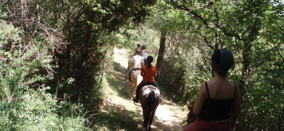 sejour-camping-centre-equestre