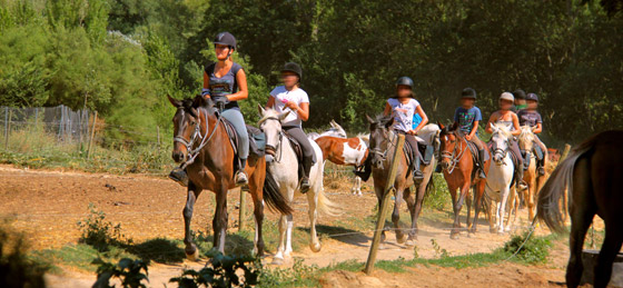 Balade chevaux