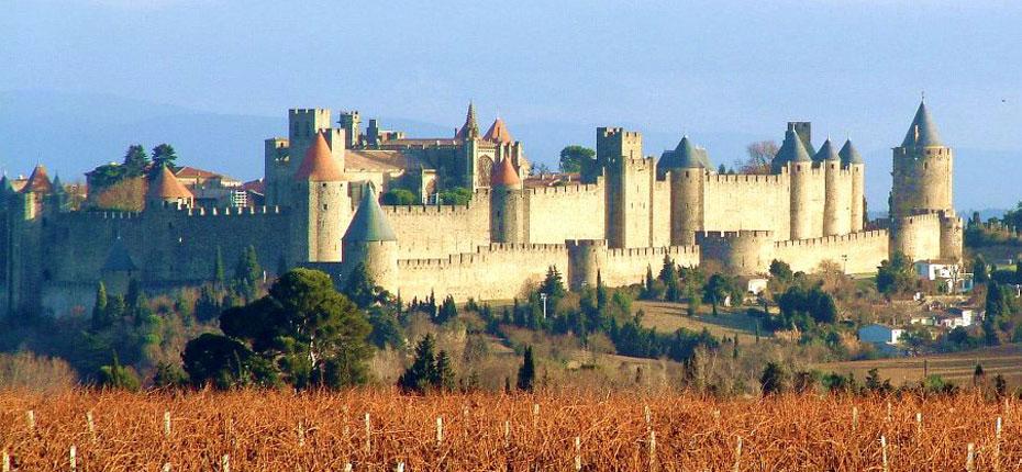 camping-carcassonne-vignes